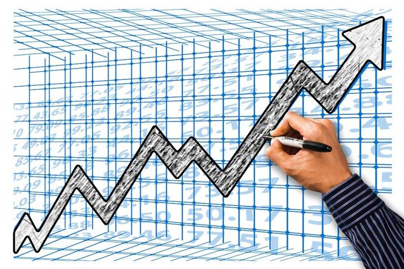 INS confirmă că economia României a crescut cu 5,7% în primul trimestru