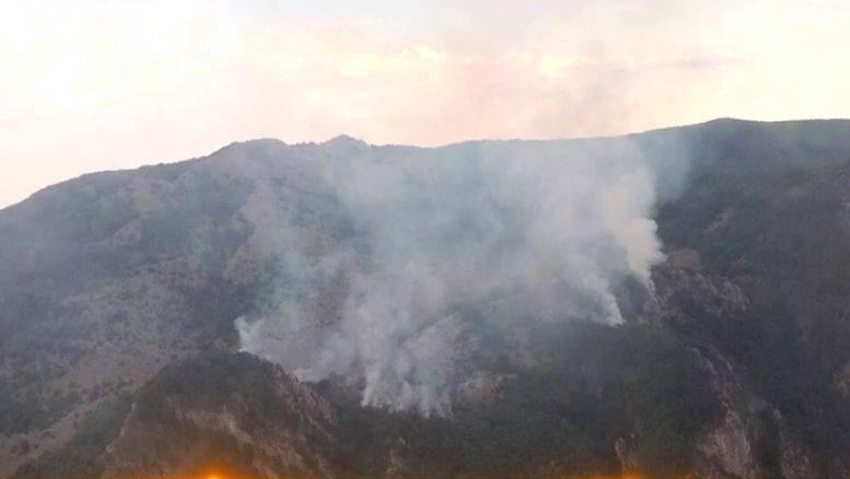 Incendiu uriaș în Mehedinți. Zece hectare de vegetație uscată și o pădure de pin sunt cuprinse de flăcări