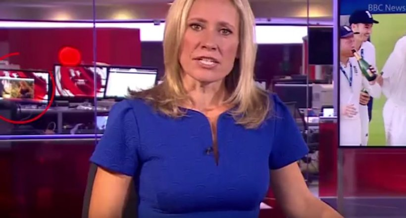 Imagini inedite în direct! În timpul difuzării unui buletin de știri, un jurnalist de la BBC, surprins în timp ce viziona un film pentru adulți (VIDEO)
