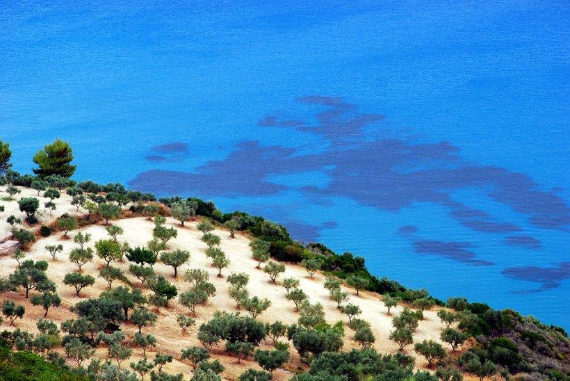 Stare de urgenţă pe o insulă din Grecia, în plin sezon turistic. Peste 12 incendii de vegetație au izbucnit în ultimele 48 de ore