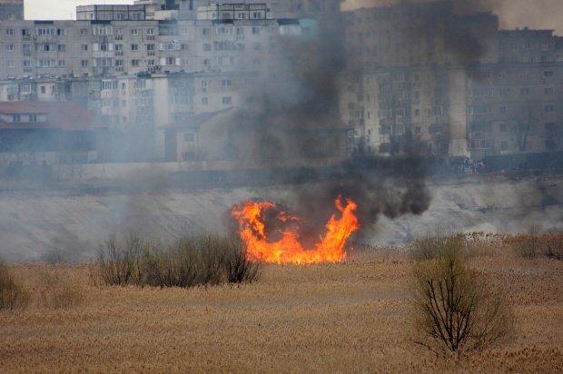 Incendiu de vegetaţie în Delta Văcăreşti din Capitală