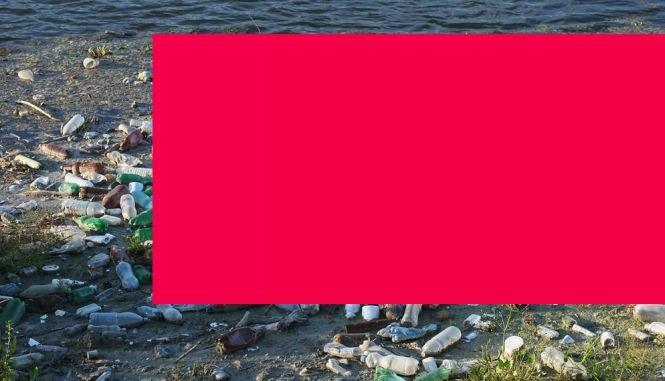 Pericol uriaş de infecție la Hunedoara. Mai multe cadavre în descompunere, descoperite în apa râului Jieţ