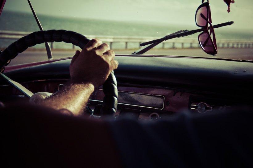 """""""Fenomenul parbrizului"""". De ce mașina ta nu mai este acoperită de insecte moarte"""