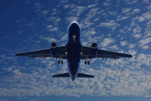 Clipe de panică într-un avion cu 248 de persoane la bord. O pasăre a lovit un motor. Ce a făcut pilotul imediat după ce a sesizat problema