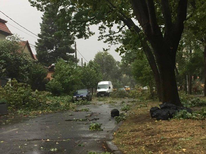 Furtună violentă în județul Timiș: Patru morți și 26 de răniți. ISU: Recomandăm oamenilor să nu iasă din casă. Primarul Timișoarei: S-au răsturnat TIR-uri 16
