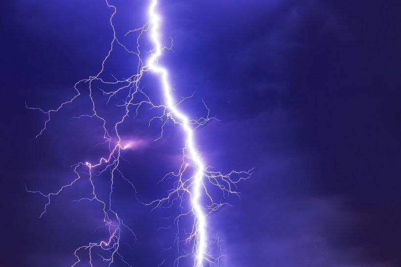 Furtuna a făcut ravagii în București! Mai mulţi copaci au căzut pe carosabil, pe fire de electricitate şi pe maşini. Un bărbat a murit 534