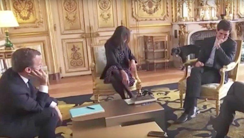 Câinele președintelui francez Emmanuel Macron, filmat când urinează pe un șemineu în timpul unei întâlniri a stăpânului său - VIDEO