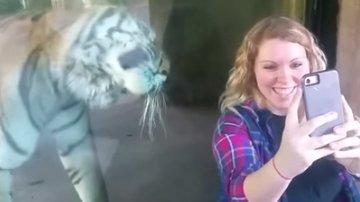 O femeie însărcinată a vrut să facă un selfie cu un tigru. S-a apropiat ușor de el, iar ce a urmat i-a lăsat pe toți fără cuvinte (FOTO+VIDEO)
