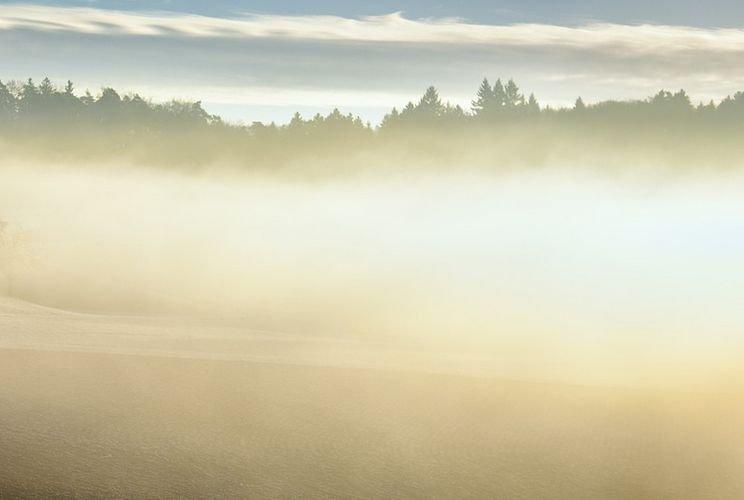 Cod galben de ceaţă în opt judeţe până la ora 23:00