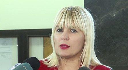 """Elena Udrea, prezentă la întâlnirile SRI - Justiție. """"Doar nu vă imaginați că îl înregistram pe domnul Coldea"""""""