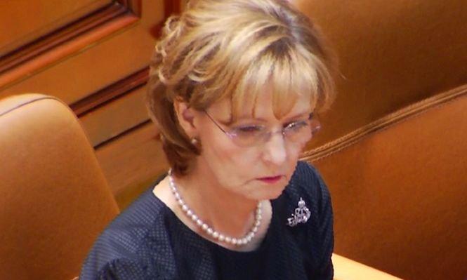 Sedinta parlamentului online dating