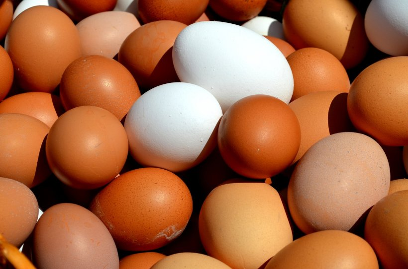 The wave of price rises in food. In the month of November, the eggs have increased by 34% compared to the same period last year