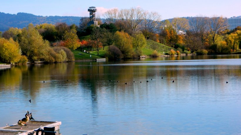 Doi înecați descoperiți sâmbătă în județul Mureș