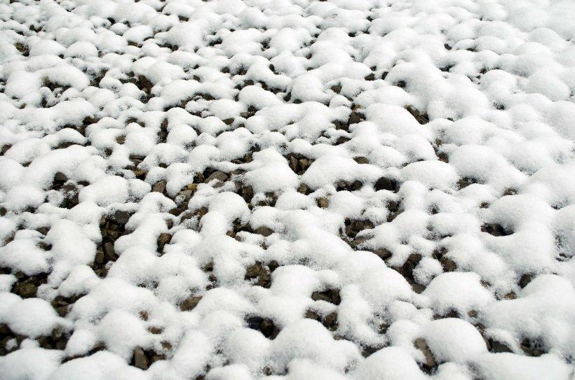 Au găsit mii de bulgări de zăpadă la malul unei ape. Oamenii au fost uimiți când s-au apropiat și au văzut ce era de fapt - VIDEO