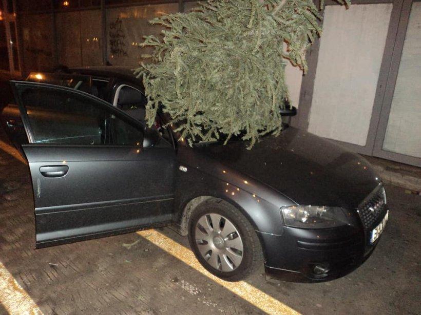 La un pas de tragedie! Un brad a fost aruncat de la balcon, peste maşinile din parcare - FOTO