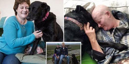 Cățelușa sa a fost diagnosticată cu cancer, iar femeia nu știa ce să facă să-i prelungească viața. Într-o zi, animalul a mușcat-o de un sân. S-a dus la medic, care i-a dat o veste cruntă