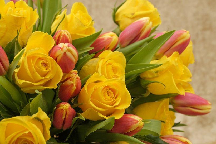 Mesaje de 8 martie. Cele mai frumoase mesaje pentru soacră