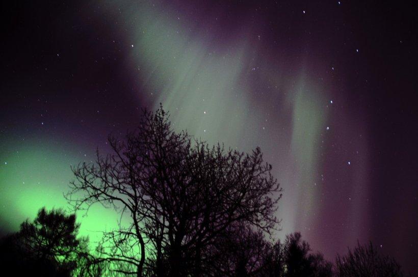 Aurora boreală, deasupra Finlandei. Nuanţe de roz şi verde au luminat cerul - VIDEO
