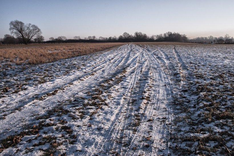 Iarna se întoarce peste România, recoltele agricole sunt în mare pericol. Vremea rea ne-ar putea lăsă fără fructe, legume şi cereale