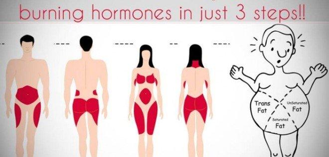 Cum să-ți activezi hormonii care ard grăsimile. Este mai ușor decât credeai