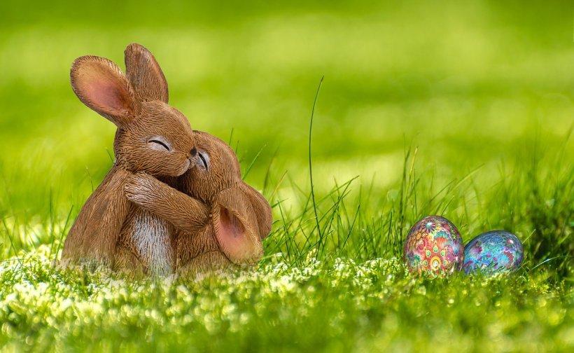 Paște Fericit Cele Mai Simpatice Mesaje Urări și
