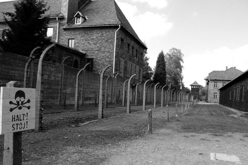 Ce secret ascundea cana unui fost prizonier de la Auschwitz. Specialiștii au fost uluiți