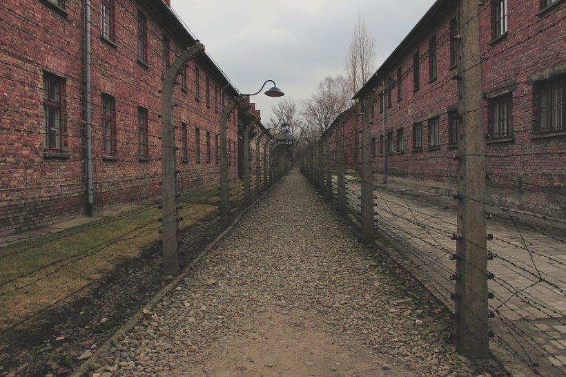 Unul dintre cele mai mari mistere ale unei evadări din timpul Holocaustului a fost dezlegat. Planul incredibil pus la cale de prizonieri