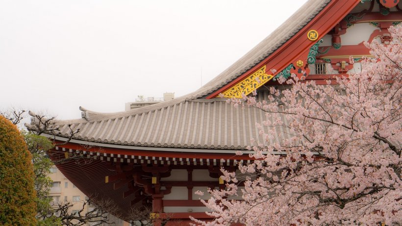 """Motivul pentru care Japonia se numește """"Țara soarelui răsare"""