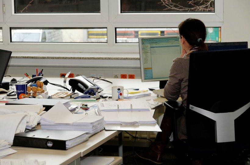 Sondaj: Cum își aleg românii angajatorii