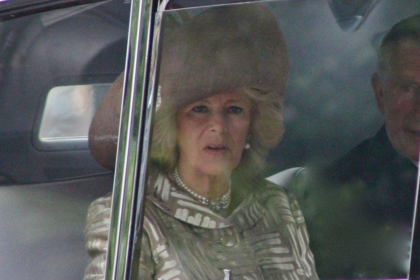 Ipocrizie regală. Soția Prințului Charles o critică pe Meghan Markle