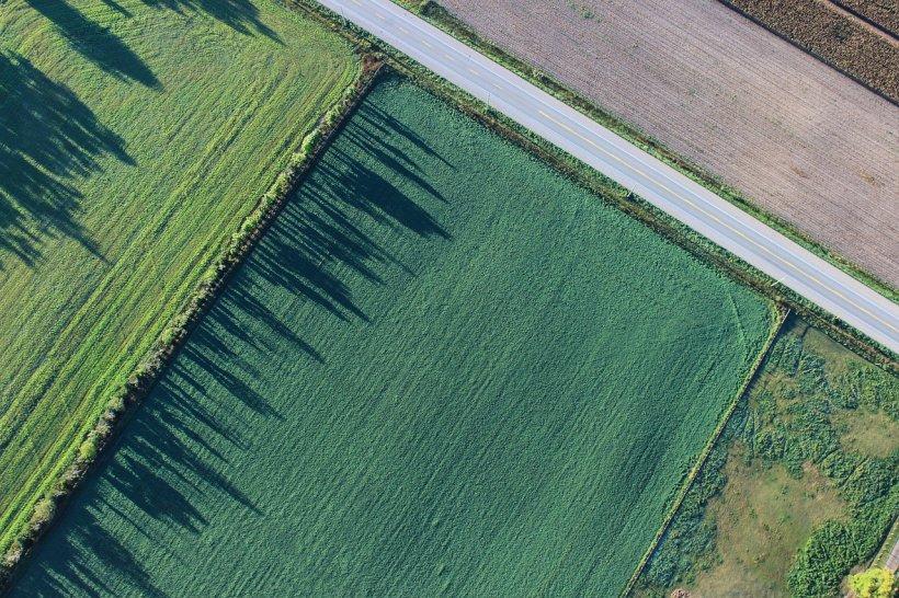 Atenție, români! Noi condiții la cumpărarea terenurilor agricole. Nu vor putea fi revândute decât în anumite condiții
