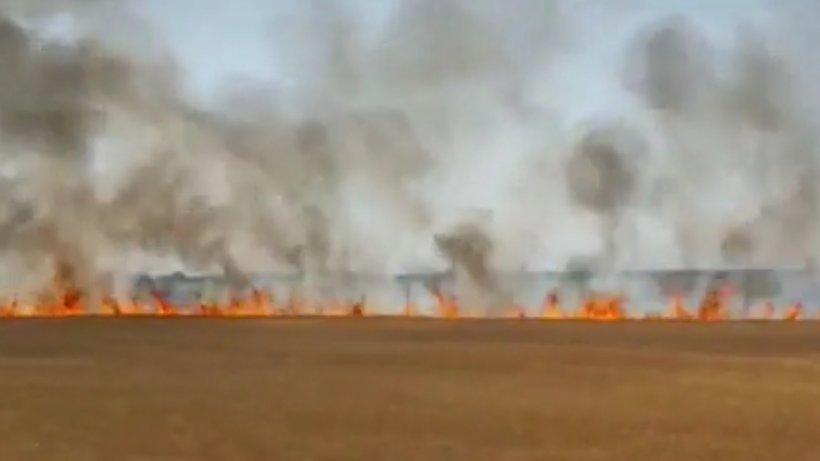 Incendiu puternic în judeţul Prahova. Flăcările au cuprins patru hectare de grâu