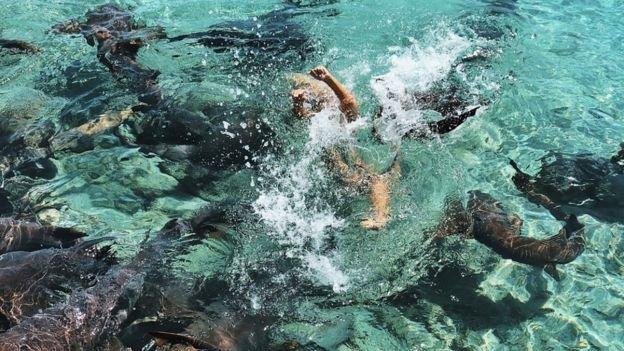 """O tânără,atacată de rechini în timpul unei ședințe foto.""""Eram sub apă şi am simţit un val de adrenalină"""". Cum a reuşit să scape - FOTO"""