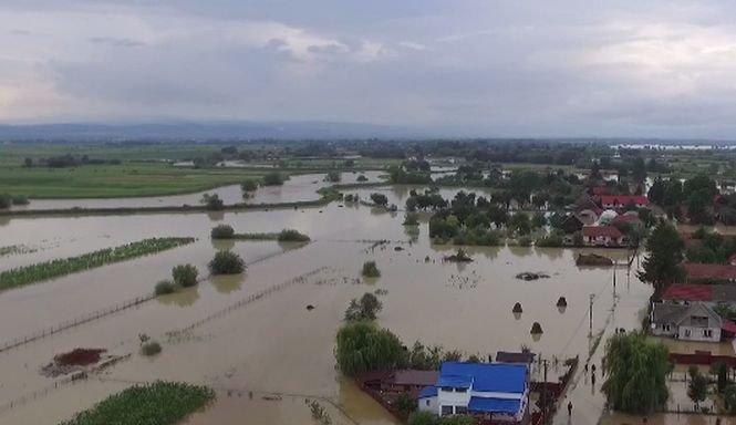 Zeci de mii de hectare de culturi au fost distruse de ploi. Roșiile și ardeii au mucegăit pe câmp