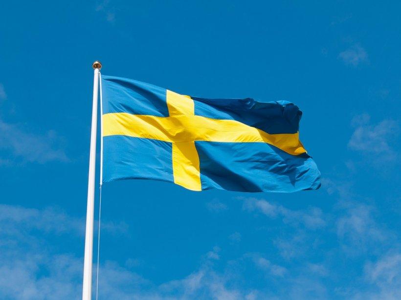 Suedezii vor cursuri de limba română. Motivul este de-a dreptul incredibil