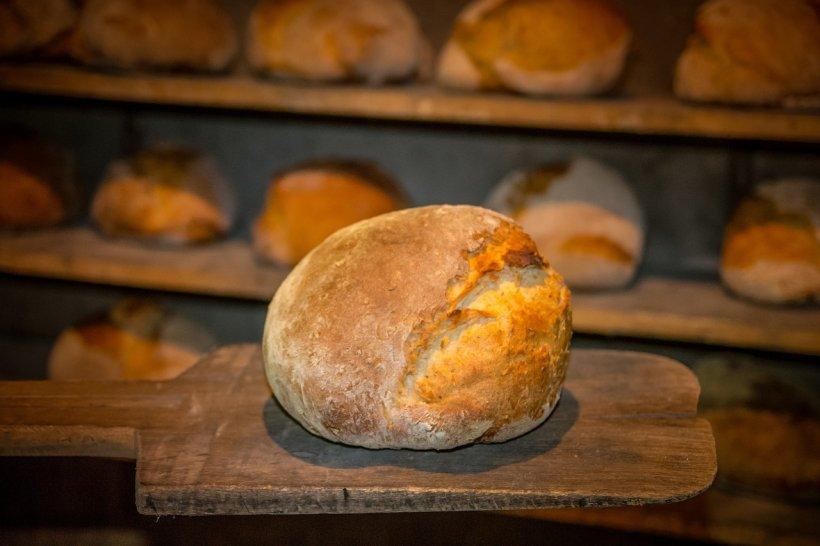 Scenariu negru lansat de agricultori. Ploile în exces vor scumpi pâinea!
