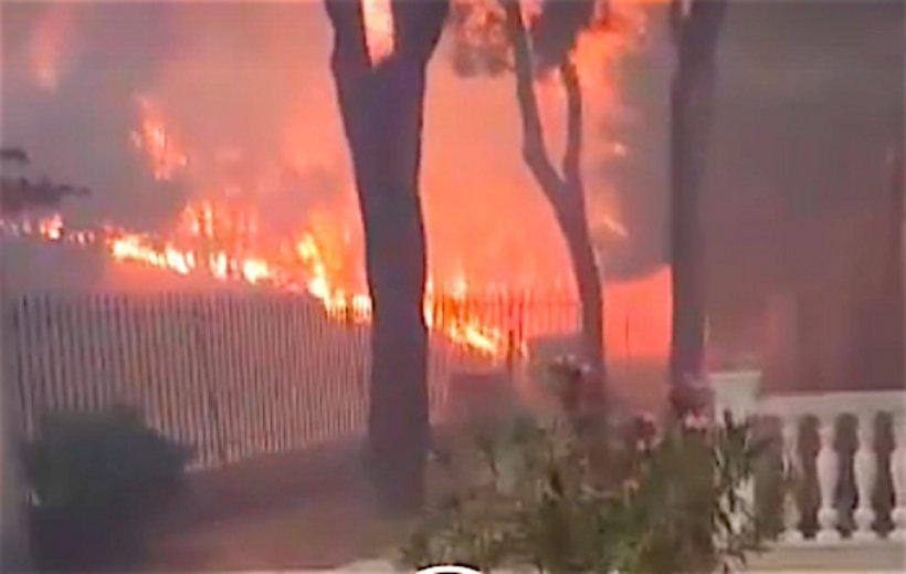 Imagini din mijlocul infernului din Grecia. Ce a surprins un bărbat care s-a întors să-şi salveze pisica - VIDEO