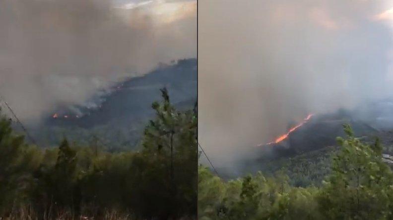 """Un grec a prezis că va muri în incendiile devastatoare. """"Mulți oameni vor arde de vii"""" - VIDEO"""