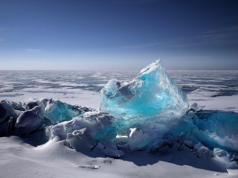 Descoperire incredibilă în Siberia. A hibernat timp de peste 40.000 de ani, iar acum a revenit la viaţă