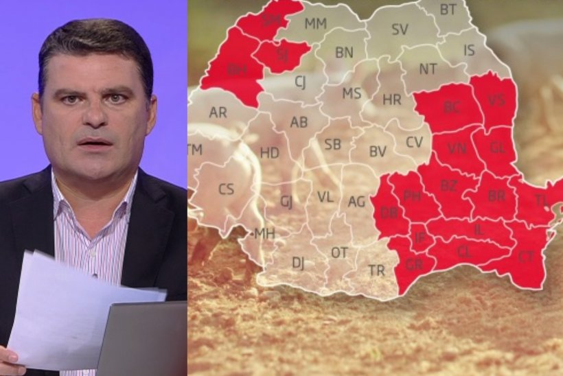 Adevărul despre pesta porcină. Date năucitoare de la Uniunea Europeană despre ce se întâmplă în România