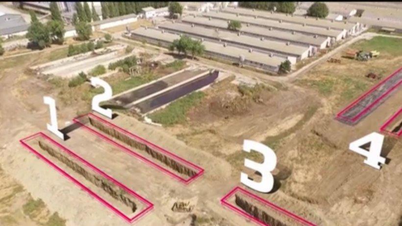 Imagini exclusive cu groapa comună din Dragalina în care ar urma să fie îngropaţi 21.000 de porci