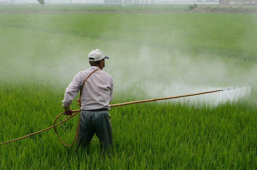 Erbicide folosite în România, declarate cancerigene de Statele Unite. Un grădinar s-a îmbolnăvit din cauza produsului