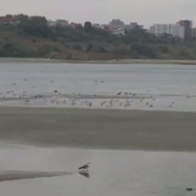 Fenomen rar în Marea Neagră! În larg au apărut mici insule de nisip - VIDEO