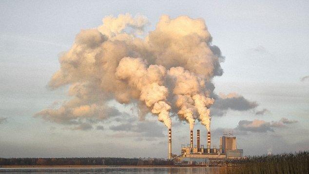 Studiu: Cum afectează poluarea dezvoltarea copiilor