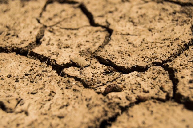 Se crapă pământul! Valul de aer tropical a prelungit seceta în România - VIDEO