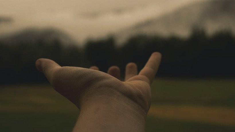 Ce semnificație au liniile de la încheietura mâinii