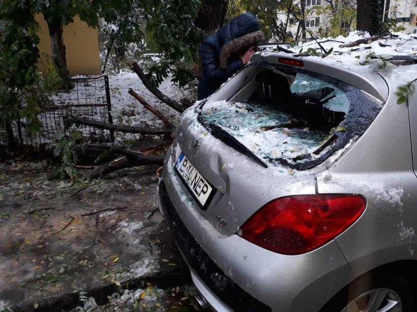 Copac căzut peste o mașină în zona cartierului Tei din Capitală, din cauza viscolului
