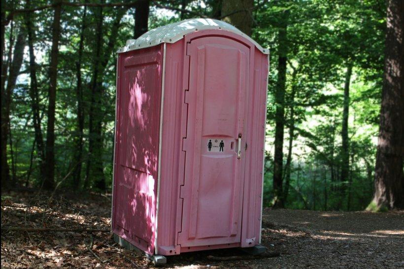 Ce au descoperit polițiștii locali într-o toaletă ecologică din Brăila. Au deschis ușa și au încremenit. Înăuntru se afla...