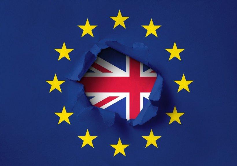 Be EU. Parlamentul de la Londra dă votul pentru BREXIT