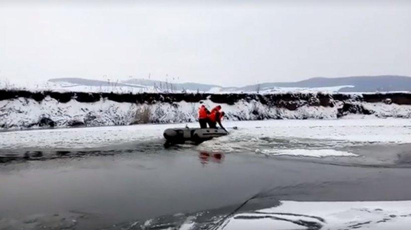 Pompierii din Cluj au salvat un cățel prins în gheață de pe râul Someș